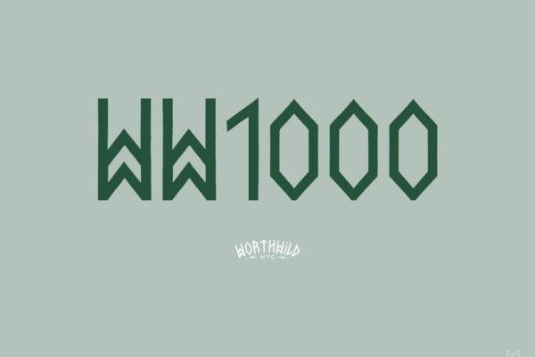 Dan-Leon-Krause-WW1000-02